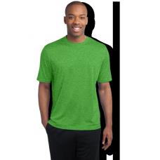 Long & Tall T-shirts (4)
