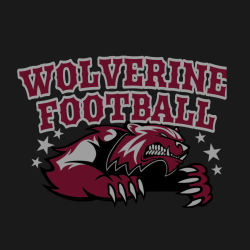 Wolverine Football T shirts