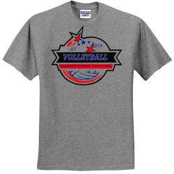 ICT-volleyball-paranaque-national-high-school-2019 UP TO DATE AUDIO VIDEO Men's 50/50 Cotton/Polyester T-Shirts Jerzees 29M