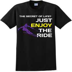 THE-SECRET-OF-LIFE-JUST-ENJOY-THE-RIDE G Adult 100% Cotton T-Shirts Gildan 2000